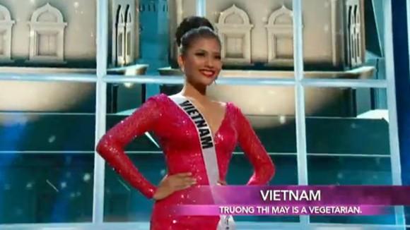 Trương Thị May tự tin diễn bikini tại bán kết Miss Universe 2013 ảnh 11