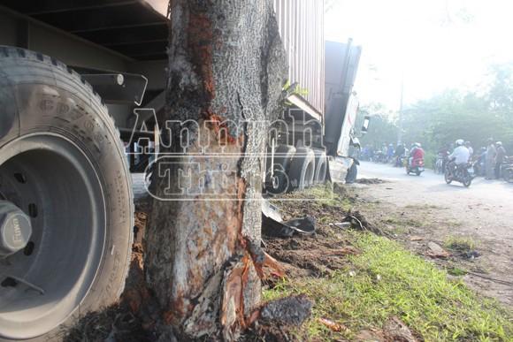 Container tông nát xe 7 chỗ, nhiều người thoát chết vì... đi vệ sinh ảnh 1