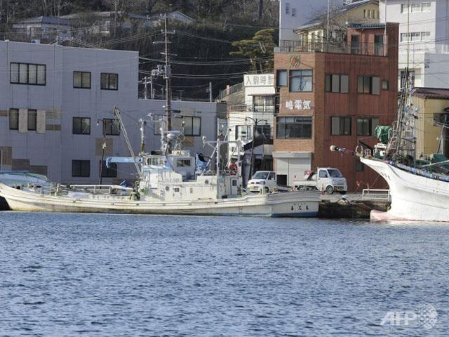 Tàu cá Nhật đâm tàu hàng, 13 người mất tích ảnh 1