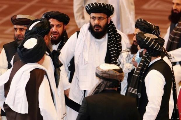 Chính phủ Afghanistan và Taliban nhất trí đẩy nhanh đàm phán hòa bình ảnh 1