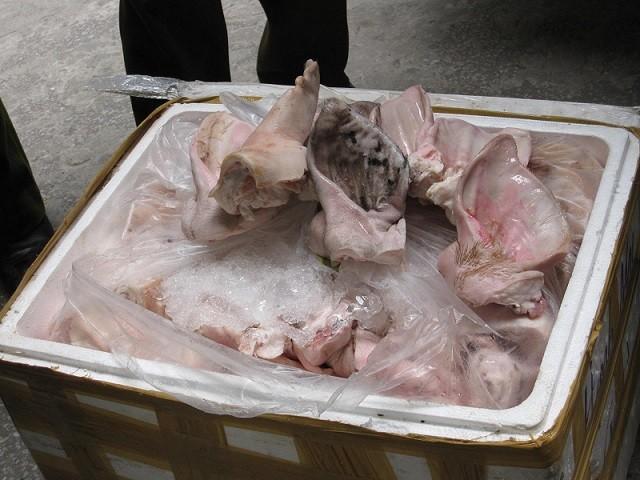 Phá vụ vận chuyển tai lợn thối thu mua từ Hà Nội đến Bắc Giang ảnh 3
