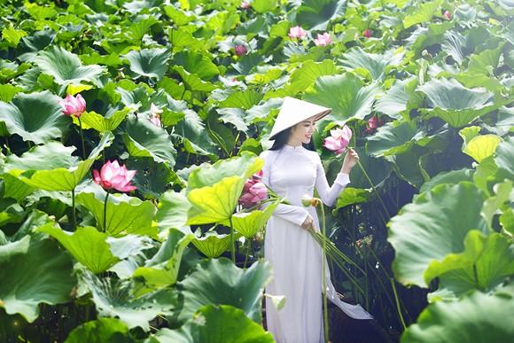 Hoa hậu Ngọc Anh tôn vinh Quốc hoa cùng cụ bà ảnh 9