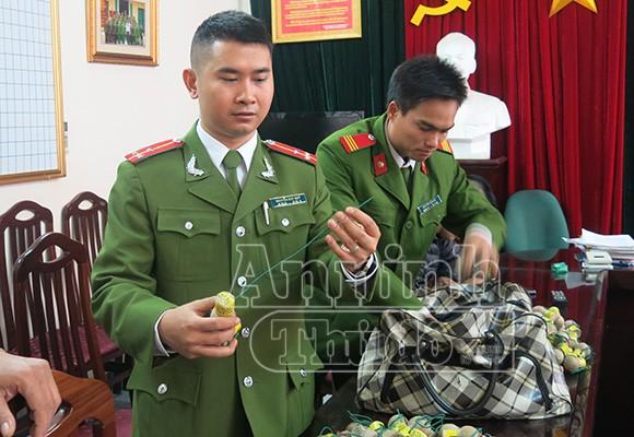 Pháo cấm tràn về Việt Nam… đón Tết ảnh 4
